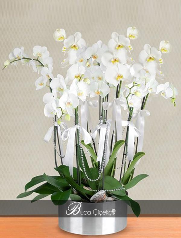 6 Dal Orkide Metal Vazo